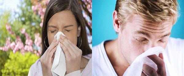 аллергия у супругов