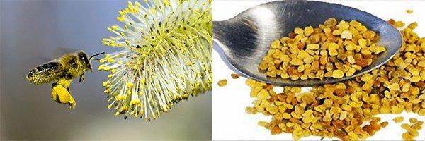Аллергия на клубнику симптомы