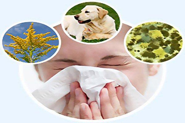 внешние причины появления астмы