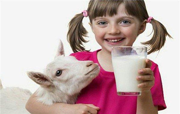 козье молоко при аллергии на пыль