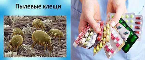 аллергены провоцирующие астму