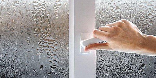 нужно следить за уровнем влажности в доме