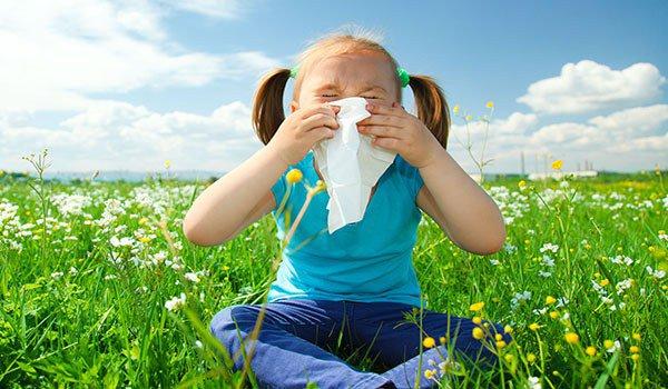 аллергия на амброзию у детей