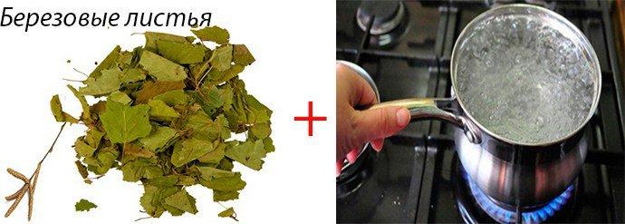 березовые листья при астме