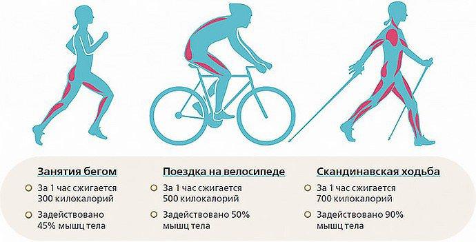 польза от физических нагрузок