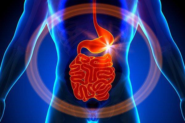 воспалительные процессы в пищеварительной системе