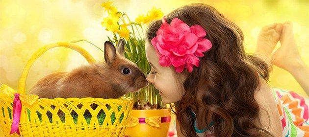 аллергия на декоративных кроликов у детей