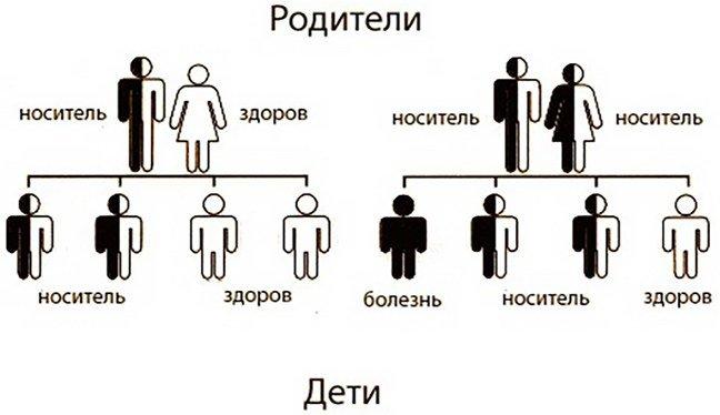 родители и дети, фактор передачи