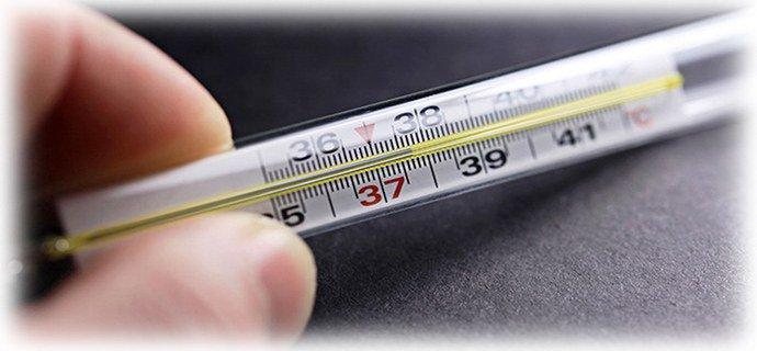 температура от глистов