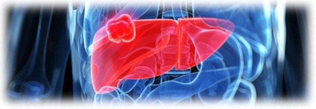 влияние гормональных мазей на печень
