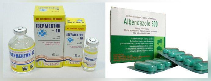 Препараты от стронгилоидоза