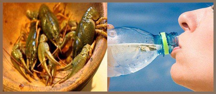 Употребление ракообразных, питье инфицированной воды