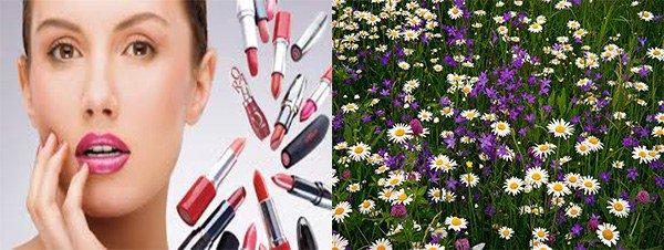 косметика и растения как причина аллергии на спине