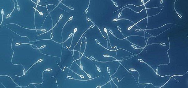 мужская сперма