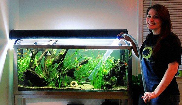 регулярная чистка аквариума