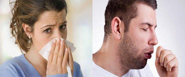 признаки аллергии на фикус