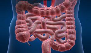 Фото и лечение перианального дерматита