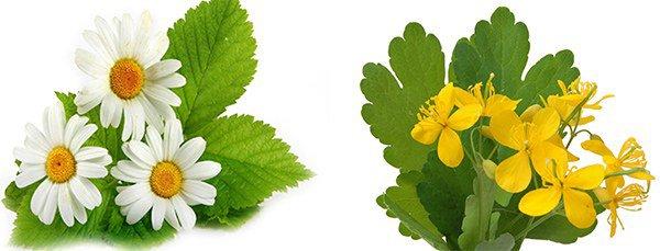 наружные препараты с лечебными травами