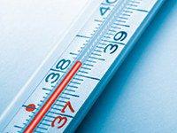 Отличие аллергии от простуды: как определить и правильно лечить