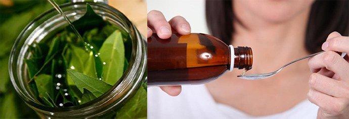 применение настойки из лаврового листа