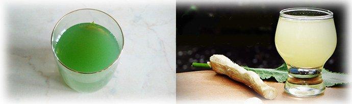 Кактус эпифиллум Уход в домашних условиях Как заставить эпифиллум цвести Фото видов. Используем кактус эпифиллум Dreamland для лечения псориаза