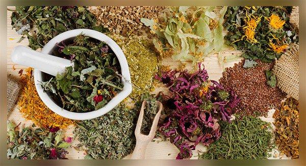 комплекс растительных экстрактов