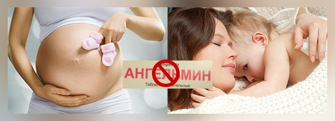 Ангельмин при беременности