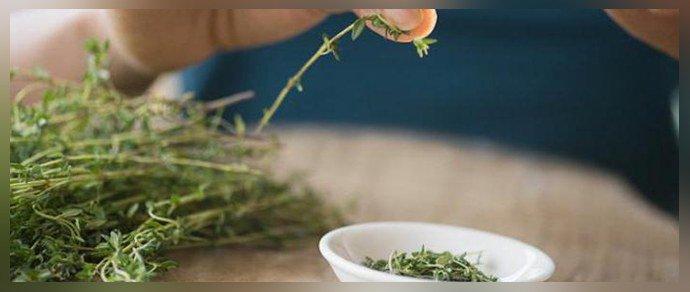 Лечение аллергии травами