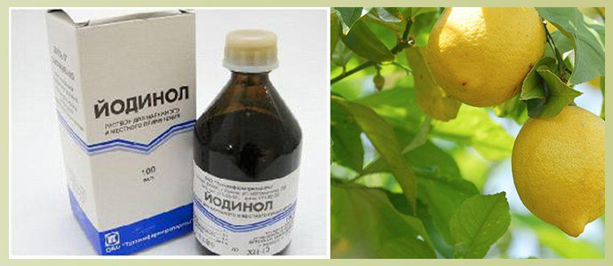 Йодинол, лимон